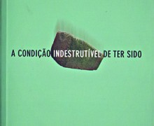 PRATELEIRA_Condiçao_indestrutivel_de_ter_sido_168