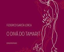 PRATELEIRA_Diva_tamarit_176