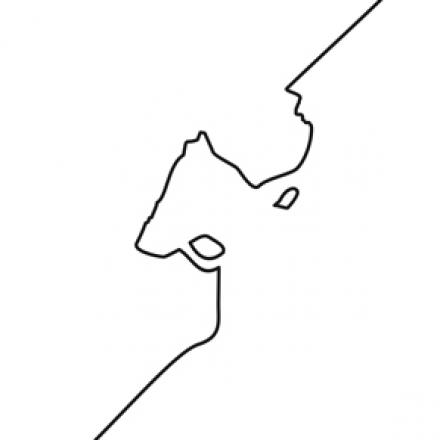 Ilustração: Carolina Vigna-Marú